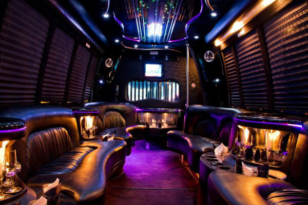 15 Person Party Bus Rental Charlotte